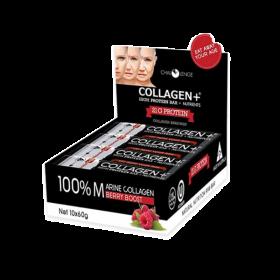 Collagen+High Protein Bar Box 10/pk
