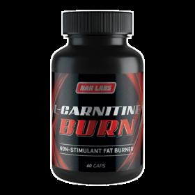 l carnitine burn